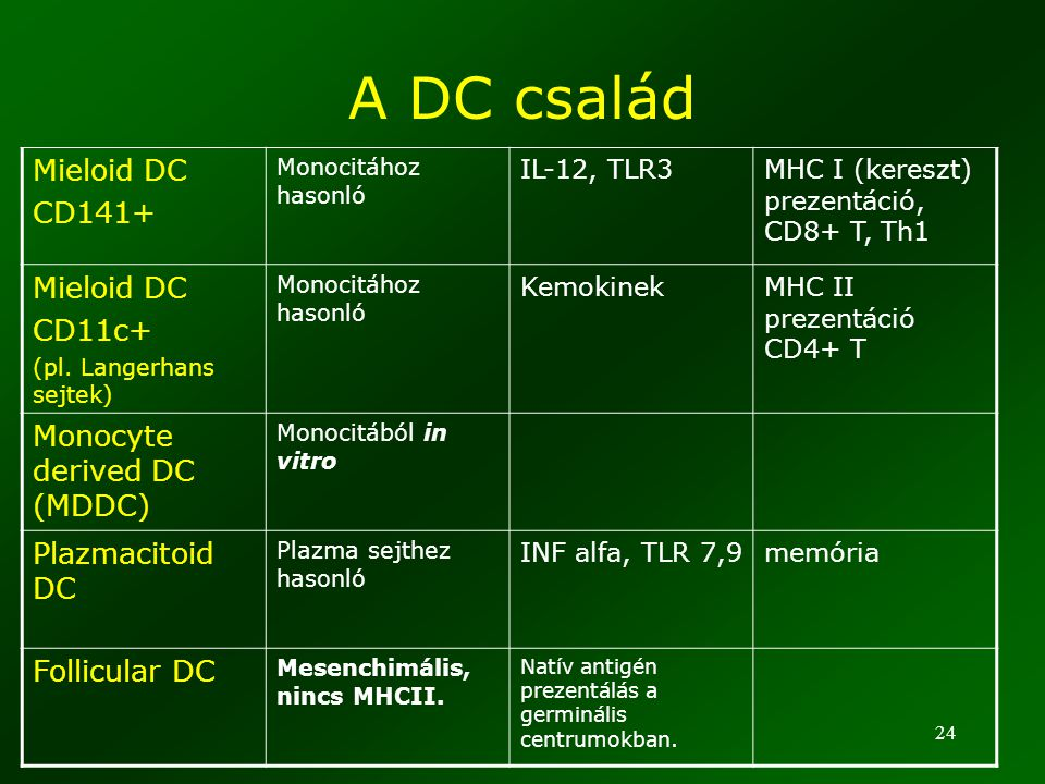 A DC család Mieloid DC CD141+ CD11c+ Monocyte derived DC (MDDC)