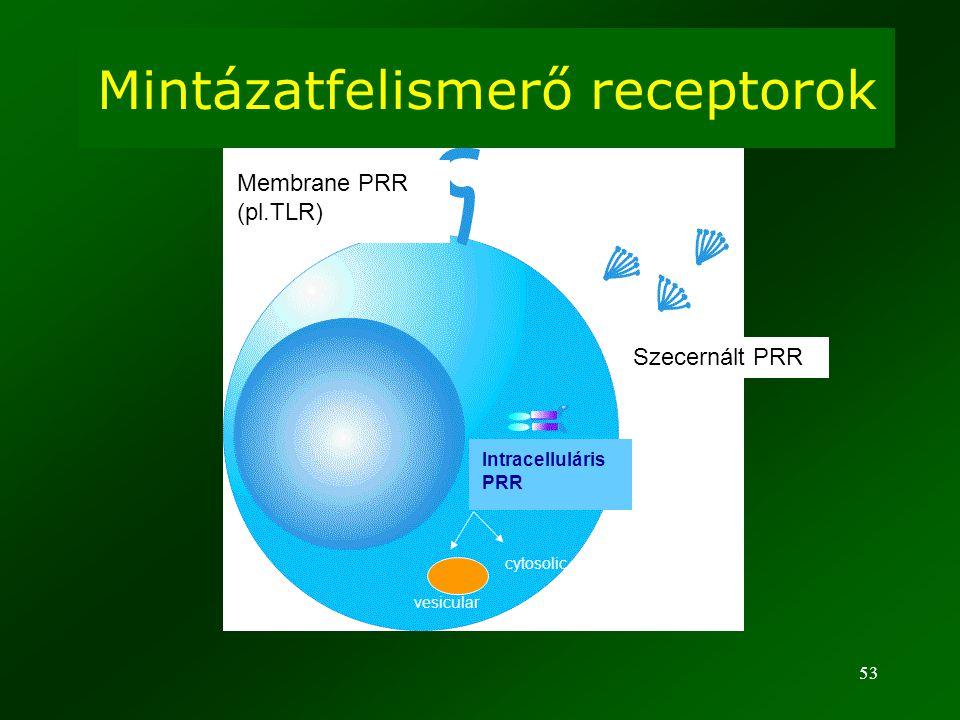 Mintázatfelismerő receptorok