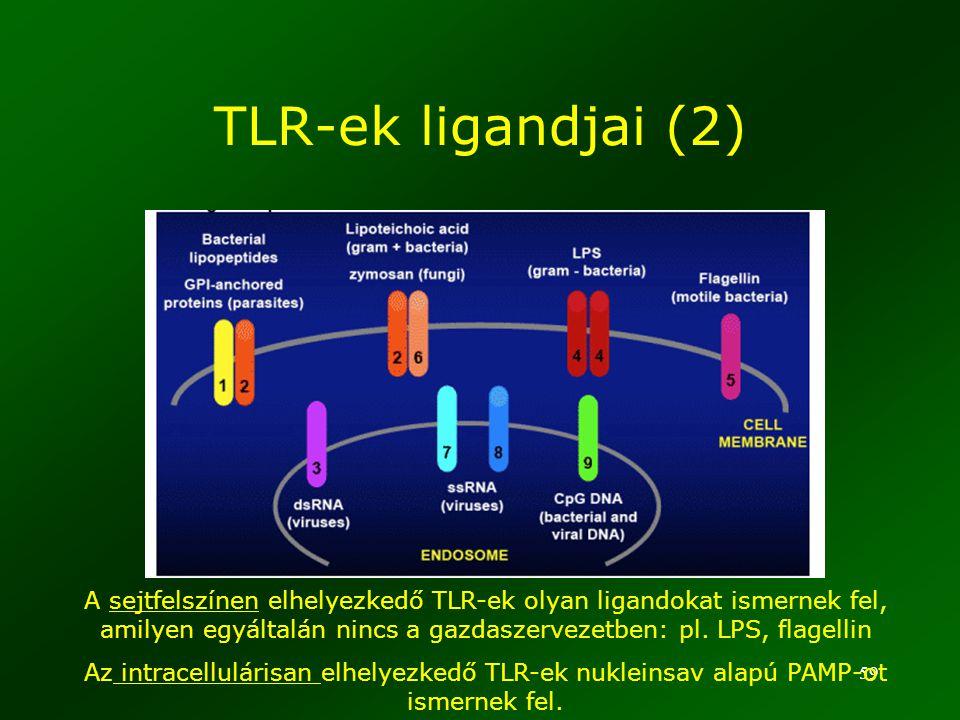 TLR-ek ligandjai (2) www.natap.org/2006/AASLD/AASLD_57.htm.