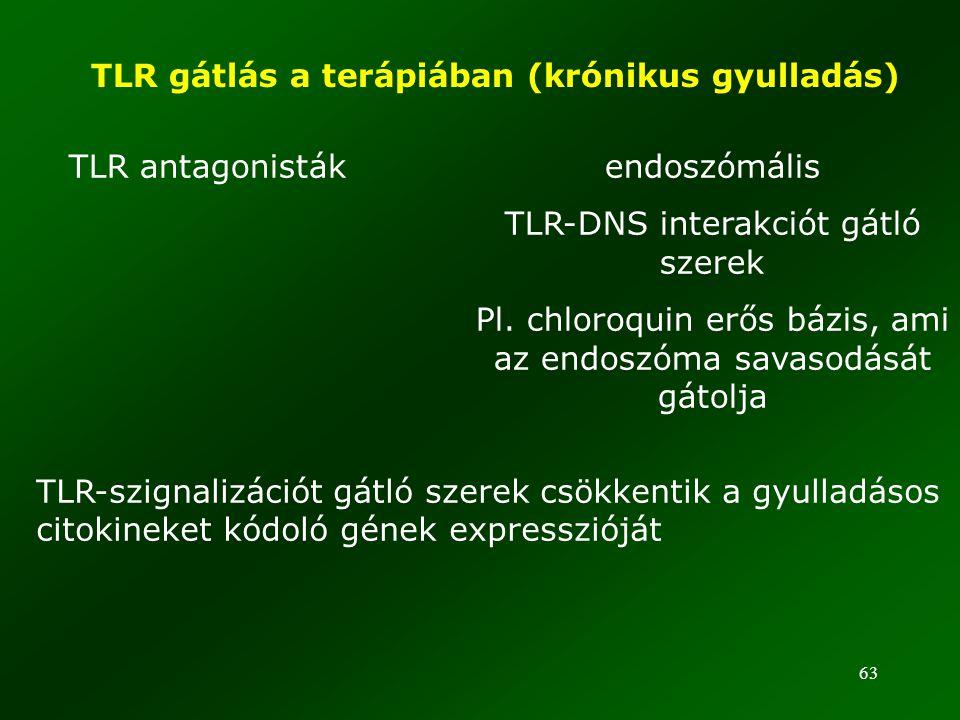 TLR gátlás a terápiában (krónikus gyulladás)