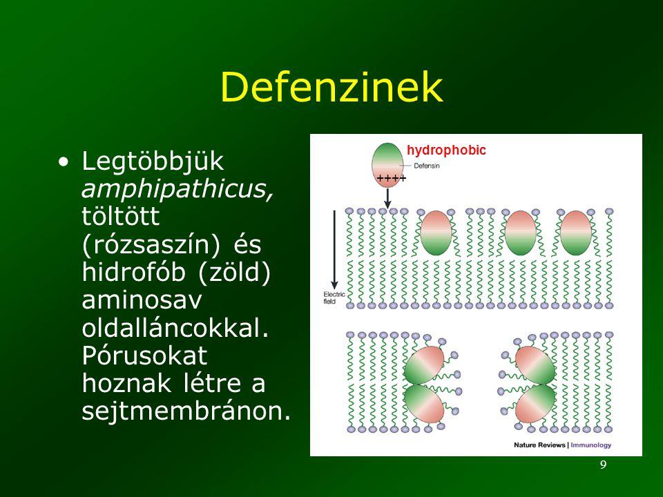 Defenzinek ++++ hydrophobic.