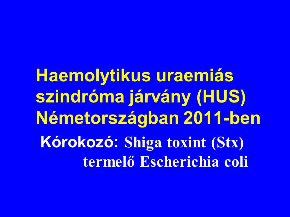 Haemolytikus uraemiás szindróma járvány (HUS) Németországban 2011-ben