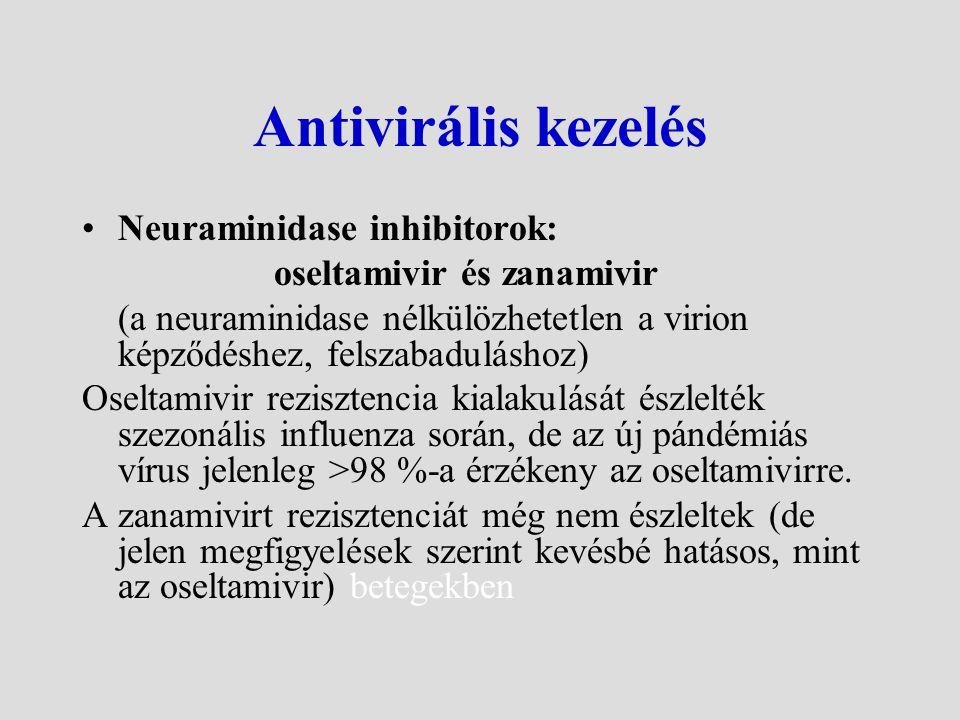 Antivirális kezelés Neuraminidase inhibitorok: