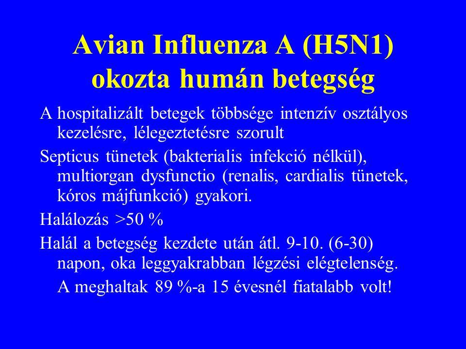 Avian Influenza A (H5N1) okozta humán betegség