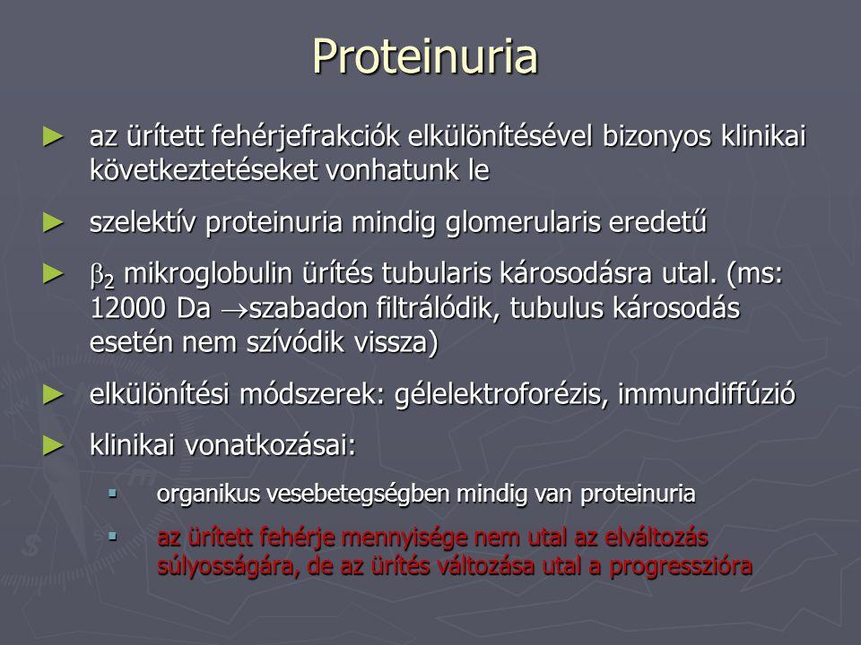 Proteinuria az ürített fehérjefrakciók elkülönítésével bizonyos klinikai következtetéseket vonhatunk le.