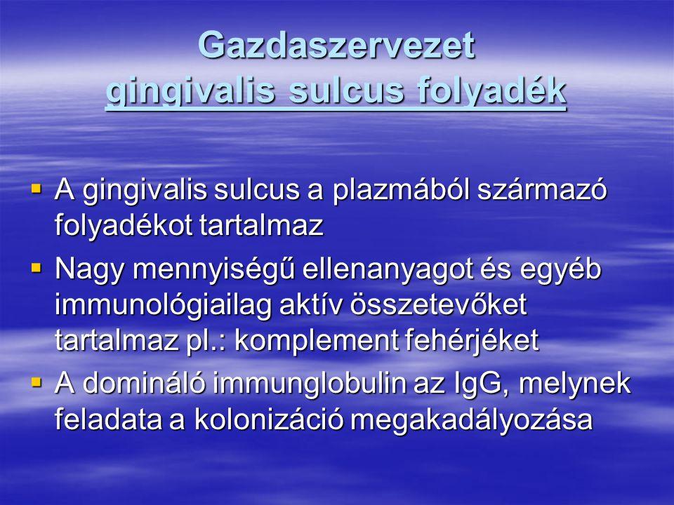 Gazdaszervezet gingivalis sulcus folyadék