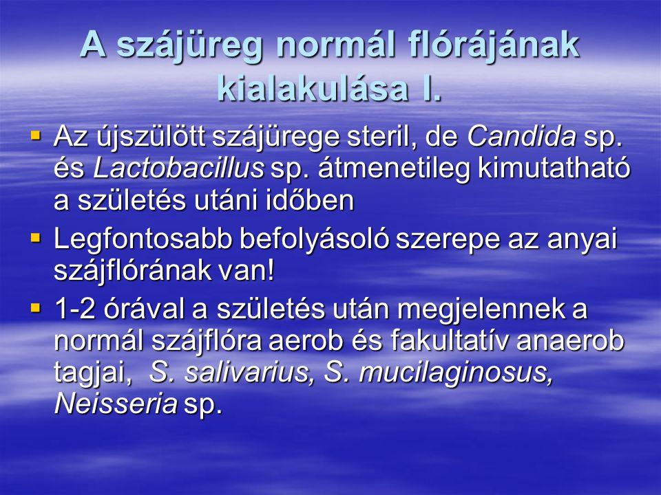 A szájüreg normál flórájának kialakulása I.