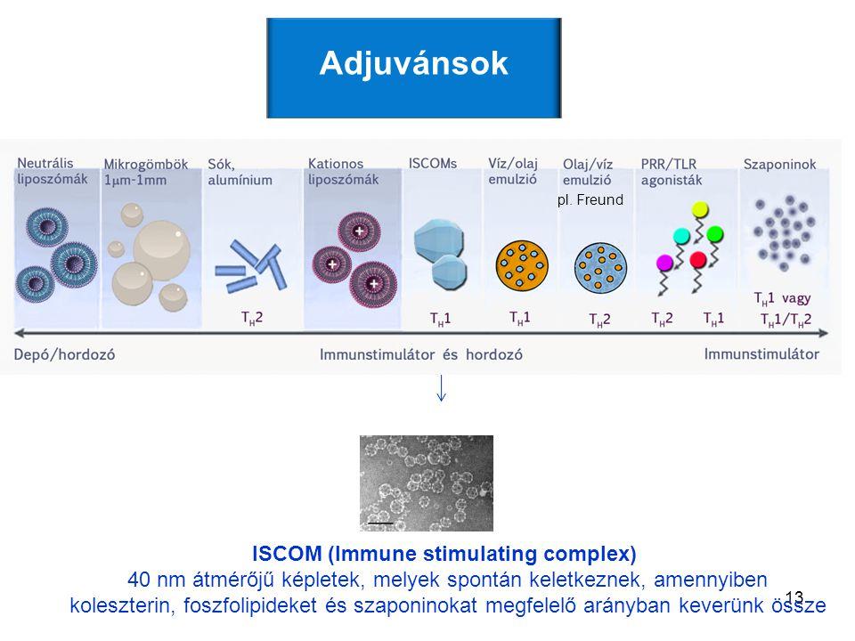 ISCOM (Immune stimulating complex)