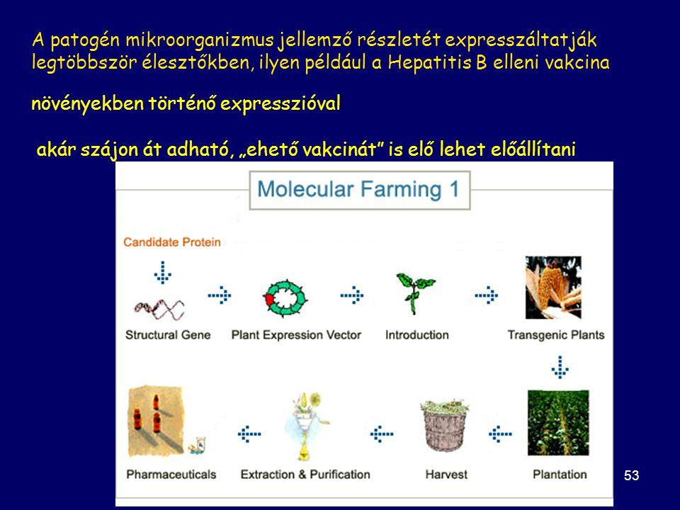 növényekben történő expresszióval