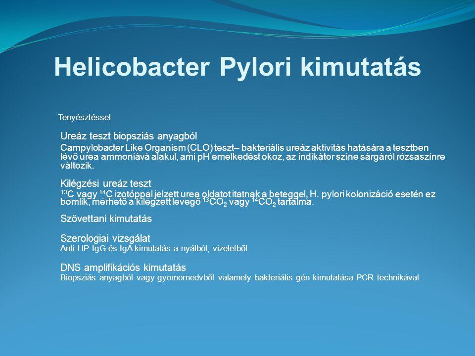 Helicobacter Pylori kimutatás