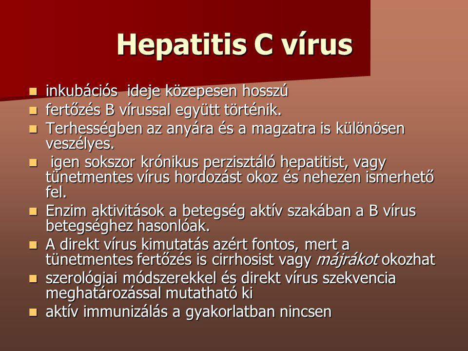 Hepatitis C vírus inkubációs ideje közepesen hosszú