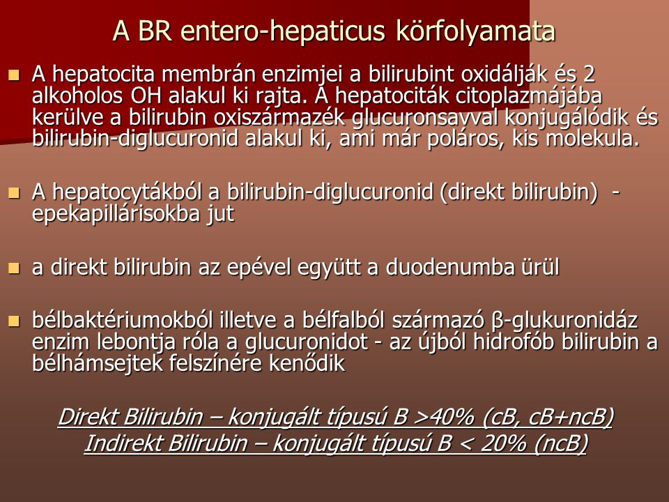 A BR entero-hepaticus körfolyamata