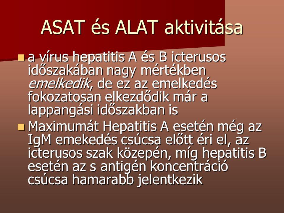 ASAT és ALAT aktivitása