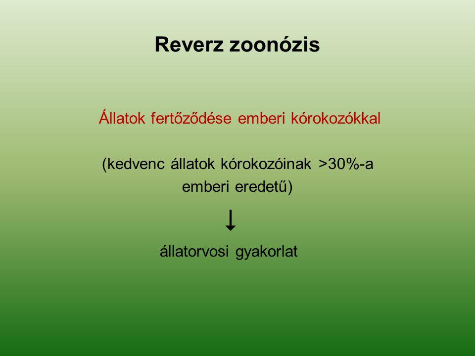  Reverz zoonózis Állatok fertőződése emberi kórokozókkal