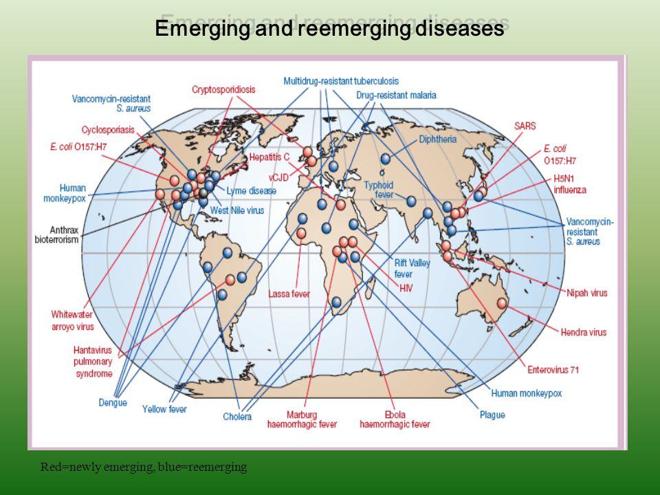 Emerging and reemerging diseases
