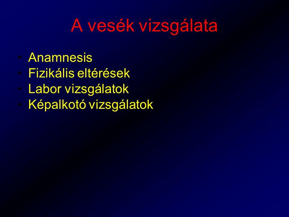 A vesék vizsgálata Anamnesis Fizikális eltérések Labor vizsgálatok