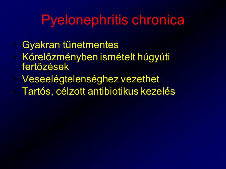 Pyelonephritis chronica