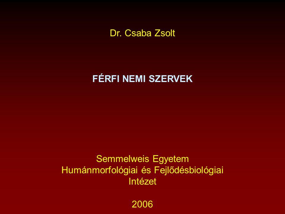 Humánmorfológiai és Fejlődésbiológiai