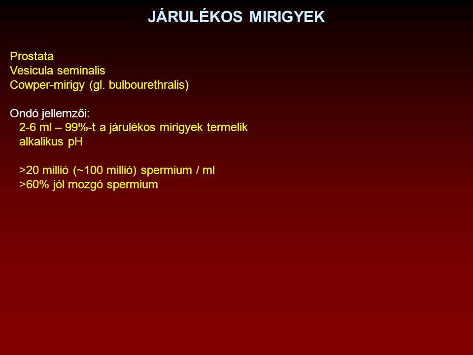 JÁRULÉKOS MIRIGYEK Prostata Vesicula seminalis