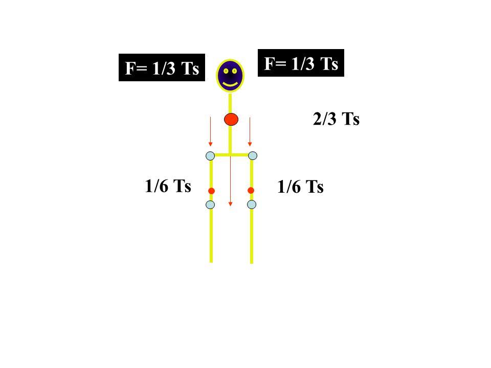 F= 1/3 Ts F= 1/3 Ts 2/3 Ts 1/6 Ts 1/6 Ts