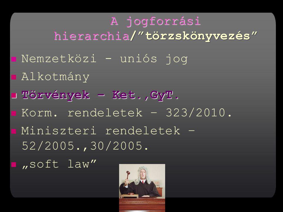 A jogforrási hierarchia/ törzskönyvezés