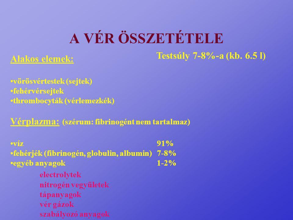 A VÉR ÖSSZETÉTELE Testsúly 7-8%-a (kb. 6.5 l) Alakos elemek: