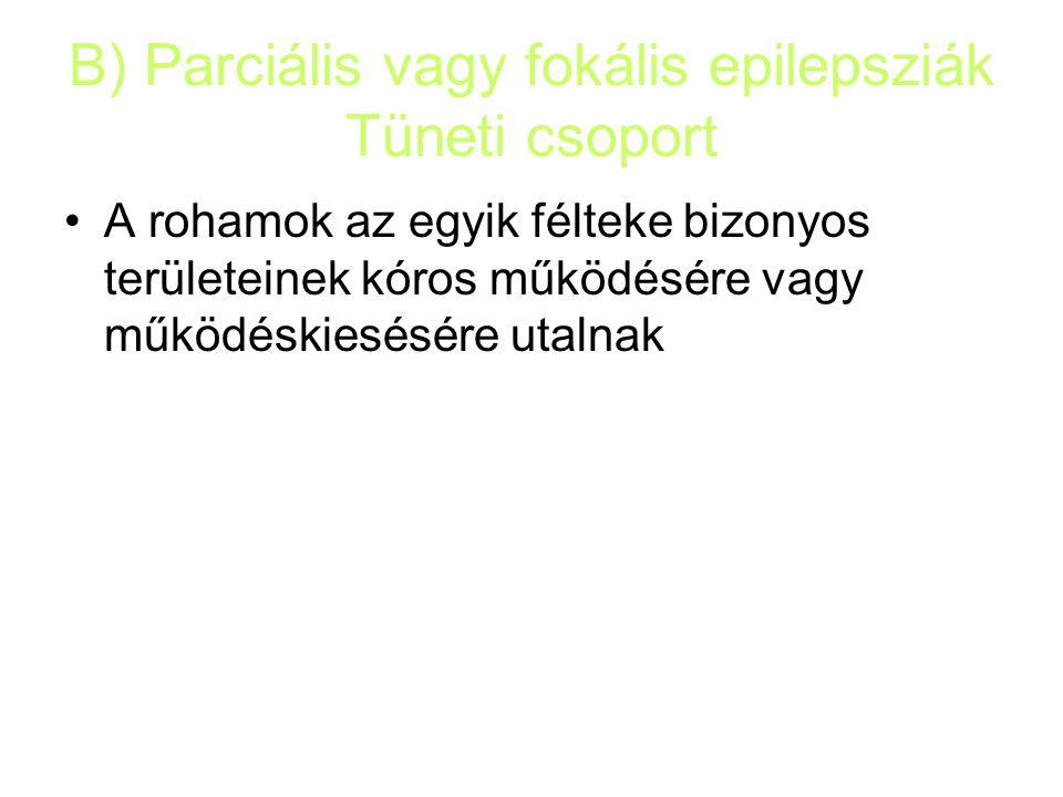 B) Parciális vagy fokális epilepsziák Tüneti csoport