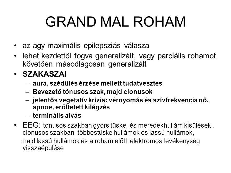 GRAND MAL ROHAM az agy maximális epilepsziás válasza