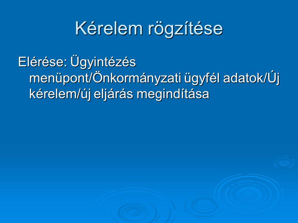 Kérelem rögzítése Elérése: Ügyintézés menüpont/Önkormányzati ügyfél adatok/Új kérelem/új eljárás megindítása.