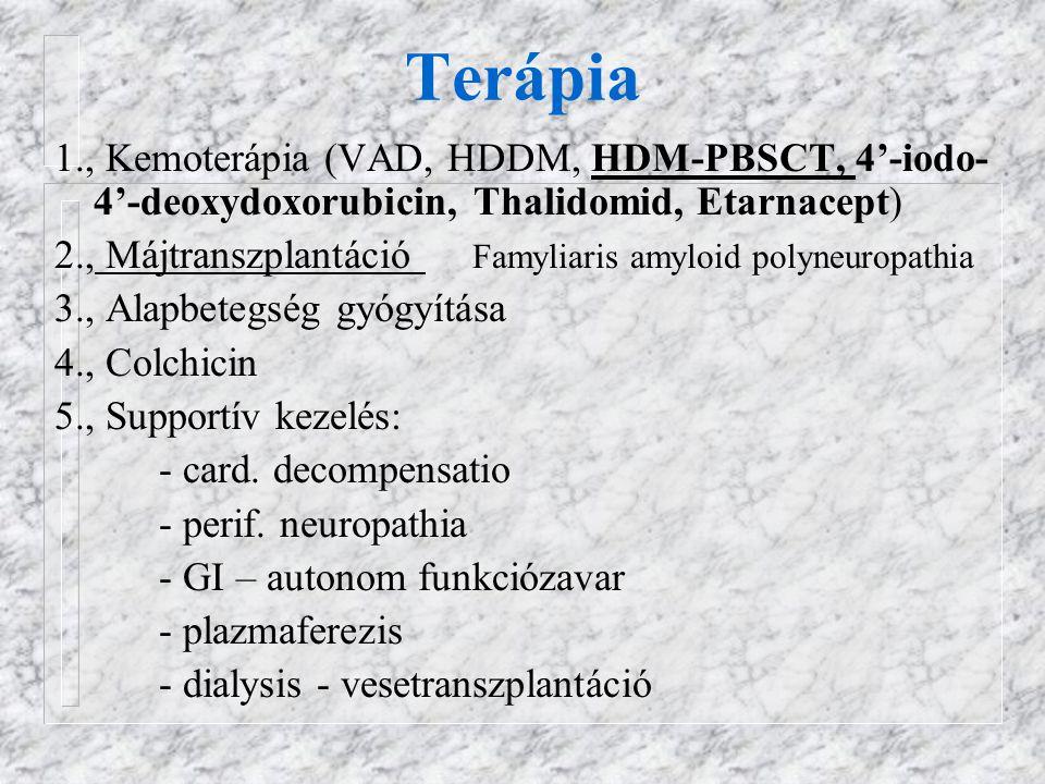 Terápia 1., Kemoterápia (VAD, HDDM, HDM-PBSCT, 4'-iodo-4'-deoxydoxorubicin, Thalidomid, Etarnacept)