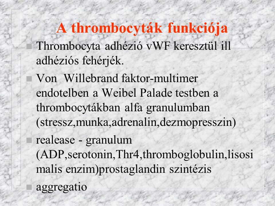 A thrombocyták funkciója