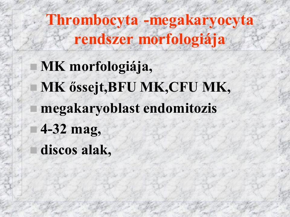 Thrombocyta -megakaryocyta rendszer morfologiája