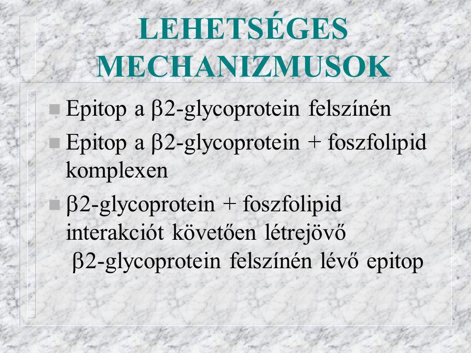 LEHETSÉGES MECHANIZMUSOK
