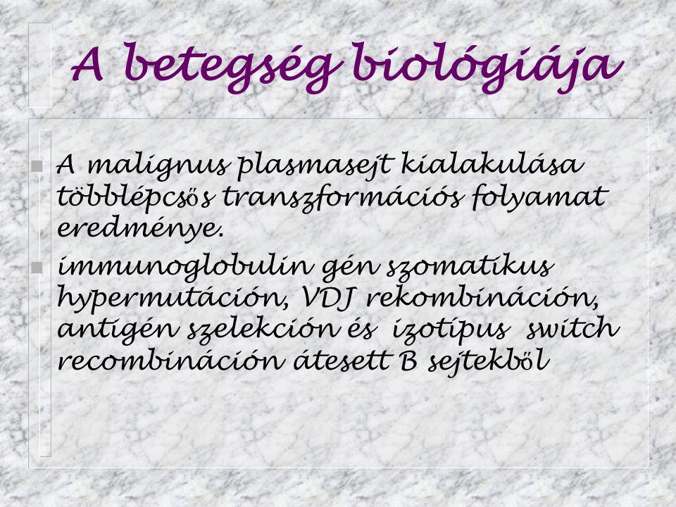 A betegség biológiája A malignus plasmasejt kialakulása többlépcsős transzformációs folyamat eredménye.