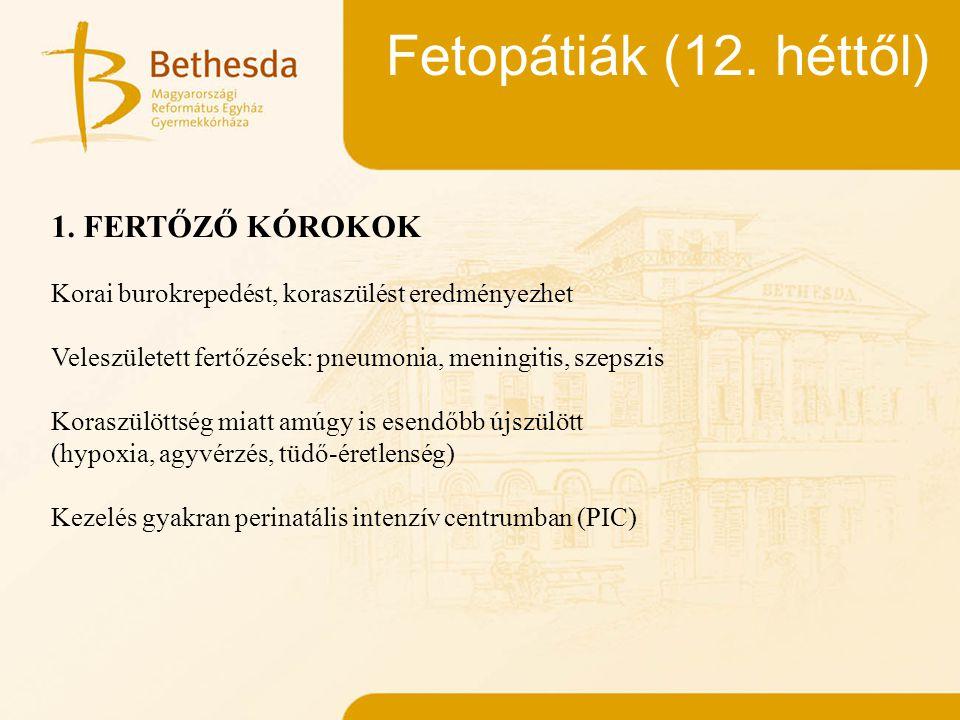 Fetopátiák (12. héttől) 1. FERTŐZŐ KÓROKOK