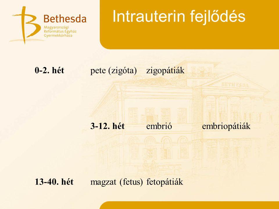 Intrauterin fejlődés 0-2. hét pete (zigóta) zigopátiák