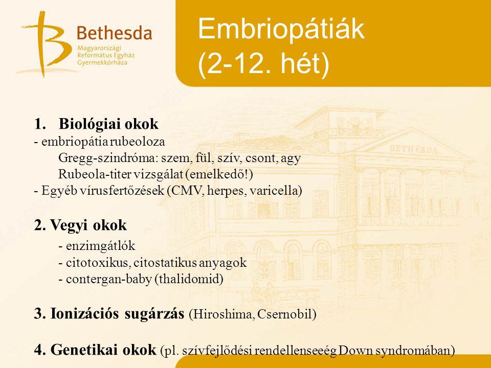 Embriopátiák (2-12. hét) Biológiai okok 2. Vegyi okok - enzimgátlók