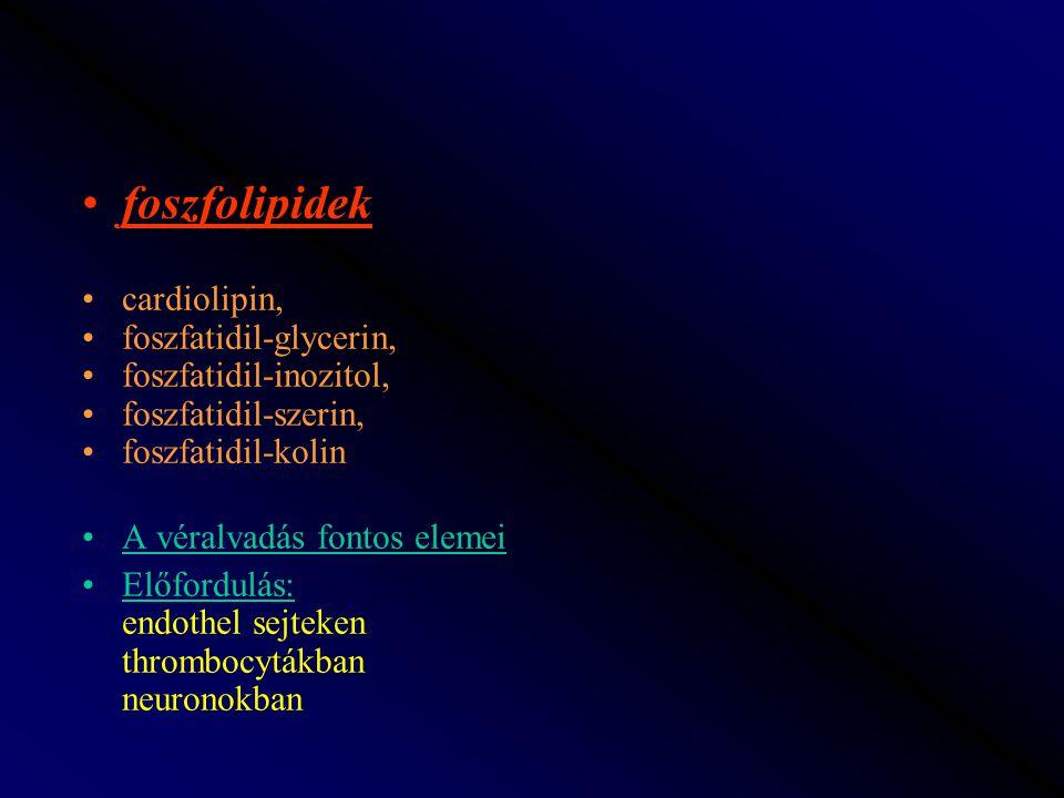 foszfolipidek cardiolipin, foszfatidil-glycerin, foszfatidil-inozitol,