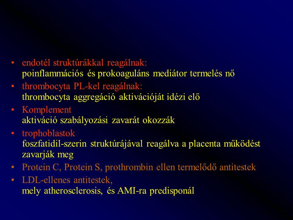 endotél struktúrákkal reagálnak: poinflammációs és prokoaguláns mediátor termelés nő