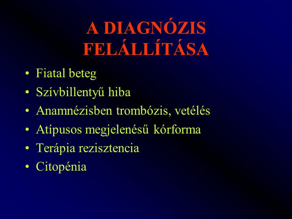A DIAGNÓZIS FELÁLLÍTÁSA