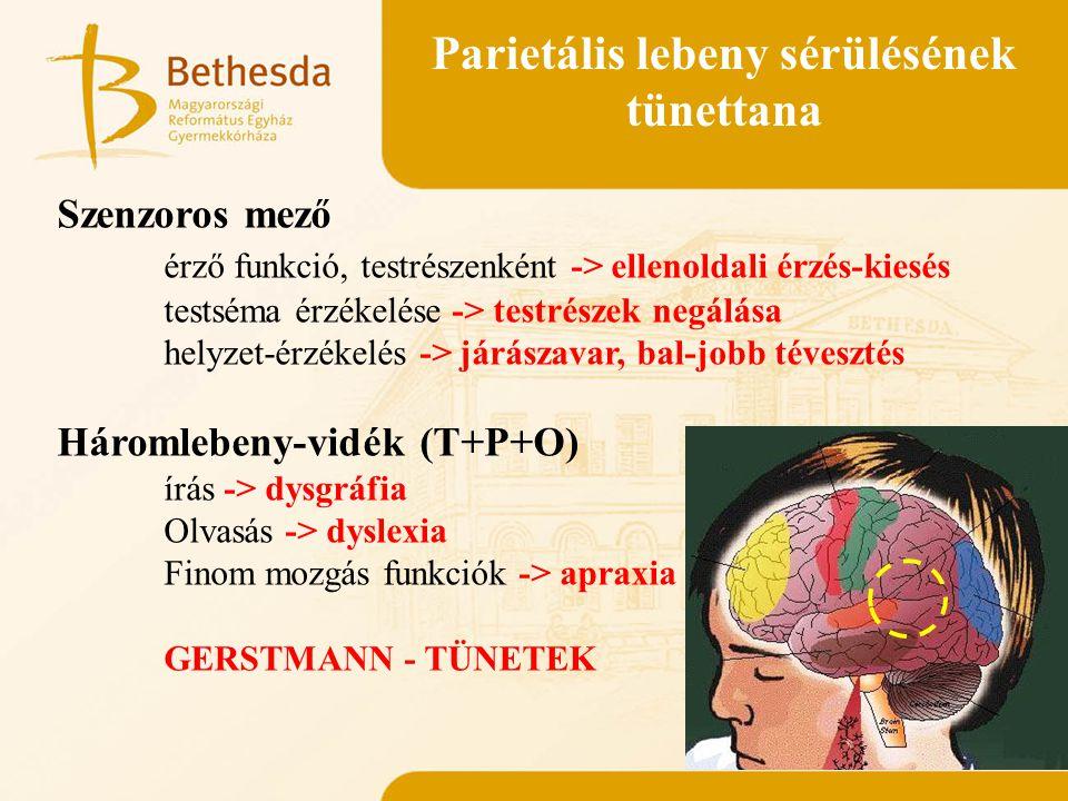 Parietális lebeny sérülésének tünettana