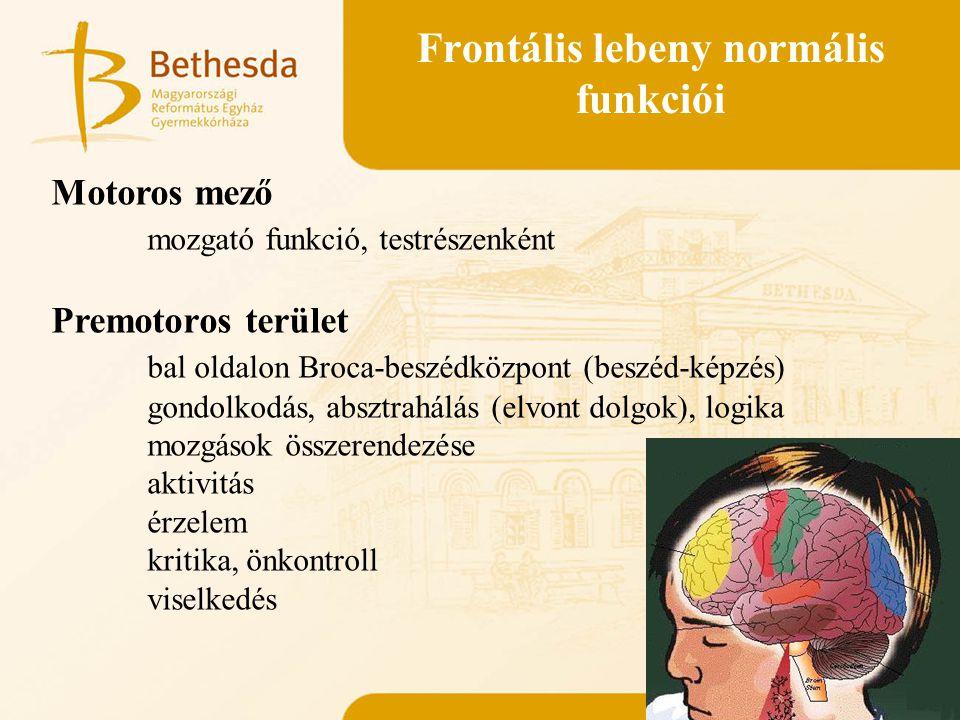 Frontális lebeny normális funkciói
