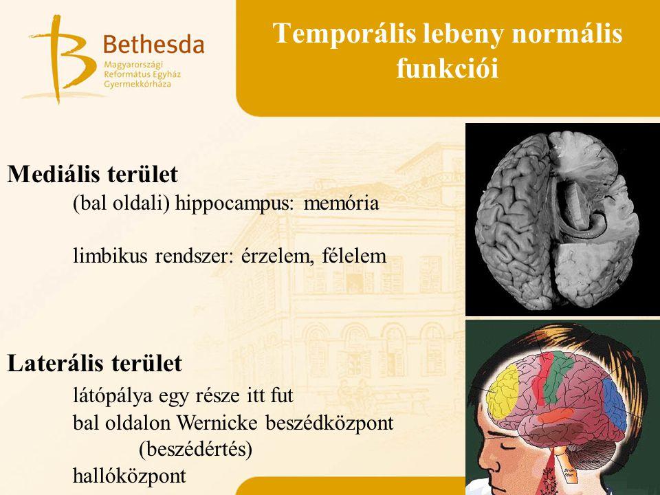 Temporális lebeny normális funkciói