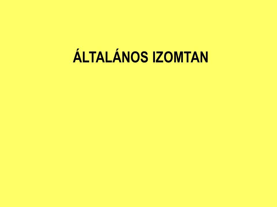 ÁLTALÁNOS IZOMTAN