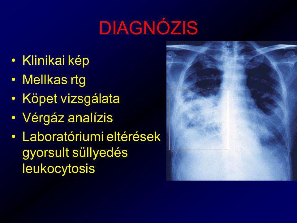 DIAGNÓZIS Klinikai kép Mellkas rtg Köpet vizsgálata Vérgáz analízis