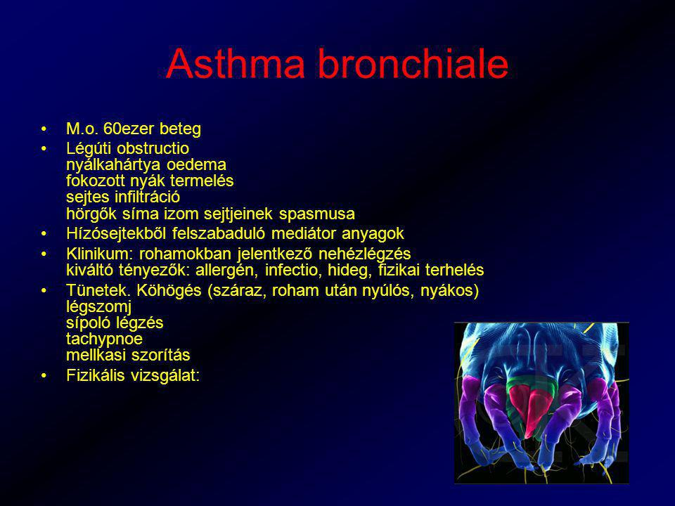 Asthma bronchiale M.o. 60ezer beteg