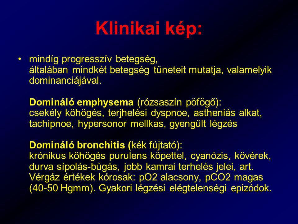 Klinikai kép: