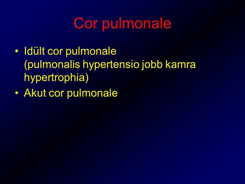 Cor pulmonale Idült cor pulmonale (pulmonalis hypertensio jobb kamra hypertrophia) Akut cor pulmonale.