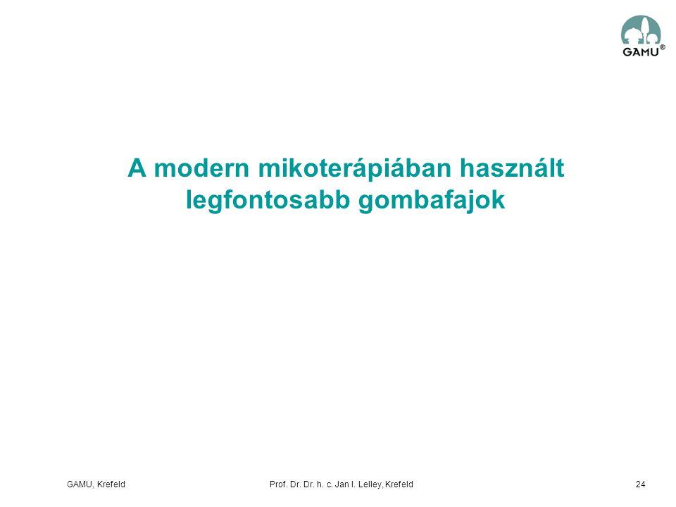A modern mikoterápiában használt legfontosabb gombafajok