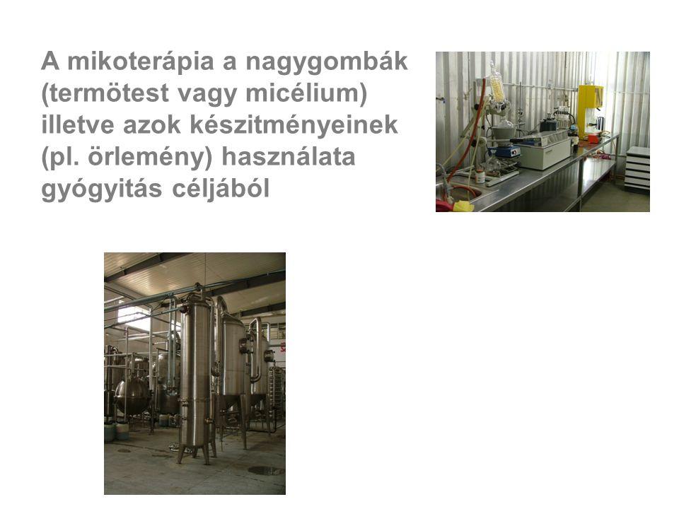 A mikoterápia a nagygombák (termötest vagy micélium) illetve azok készitményeinek (pl.